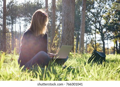 woman sitting with laptop in park on a sunny afternoon