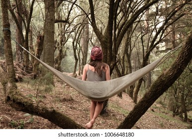 woman sitting on a hammock looking at trees