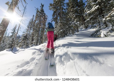 Woman skier freeride skitur uphill in snow in winter forest