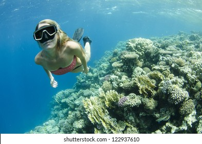 Woman snorkeling and free diving On a coral reef