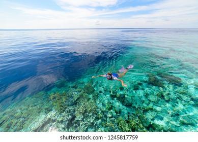 Woman snorkeling on coral reef tropical caribbean sea, turquoise blue water. Indonesia Wakatobi archipelago, marine national park, tourist diving travel destination