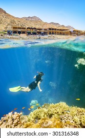 Woman snorkeling in Red Sea, Egypt