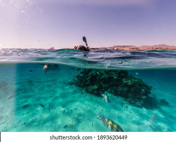 Woman snorkeling underwater and surface split view