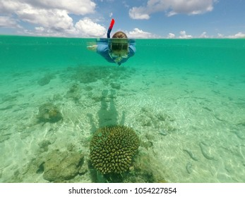 Woman snorkelling above a healthy coral with small tropical fish in Rarotonga, Cook Islands. Real people. Copy space