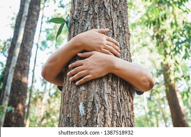 A woman stand behind and give a hug to the old tree in the tropical forest