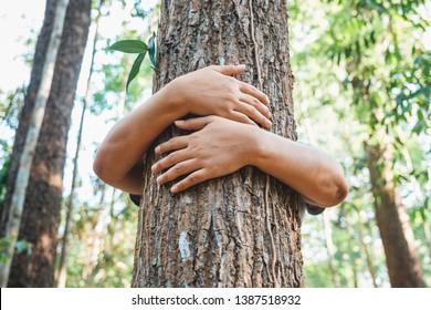 Une femme se tient derrière et embrasse le vieil arbre dans la forêt tropicale