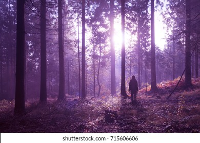 Woman standing in magical purple colored foggy deep forest with sunlight.
