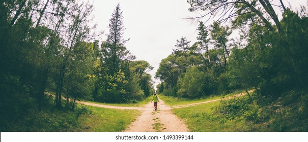 A woman stands at the crossroads of two forest roads. The girl at the crossroads. The choice of the path. Woman lost in the woods. The choice of ways to achieve the goal.