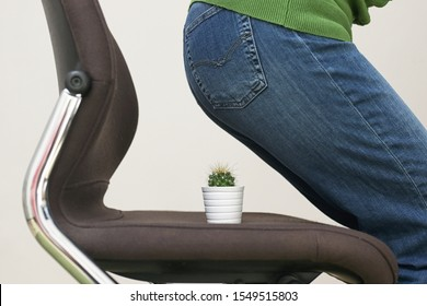 Woman Suffering From Hemorrhoids And Thorny Cactus on chair - Shutterstock ID 1549515803