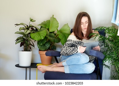 Woman in sweater sitting in armchair browsing tablet and lounging.