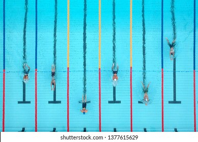 Woman swimming breaststroke on pool in competition from above