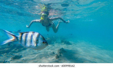 Woman swimming underwater with colorful fishes