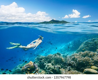 Woman swims around a coral reef surrounded by a multitude of fish on the background Islands.North Sulawesi, Indonesia.