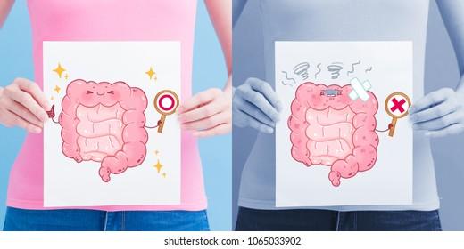 woman take intestine billboard on the blue background