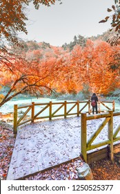 Woman takes photo of pond at Yedigoller Nature park located in Bolu,Turkey on wooden handrails bridge on foreground.Autumn concept