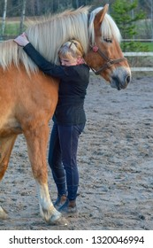Woman taking care of horse