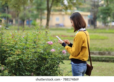 The woman taking photos of flower with smartphone