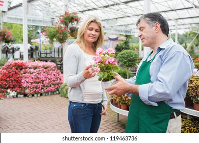 Woman talking to worker about plant in garden center