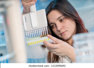 Woman technician with multipipette in genetic laboratory PCR research. Student girl use pipette. Young female scientist loads samples for DNA amplification by PCR