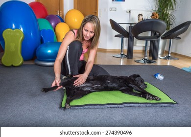 woman therapist working with dog