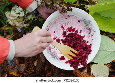 Woman throwing away food waste into compost heap, outdoor closeup shot