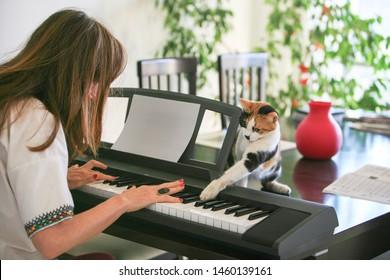 Woman and tortoiseshell cat playing the piano in Beirut, Lebanon