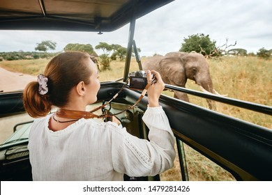 Woman tourist on safari in Africa, traveling by car with an open roof of Kenya and Tanzania, watching elephants in the savannah.