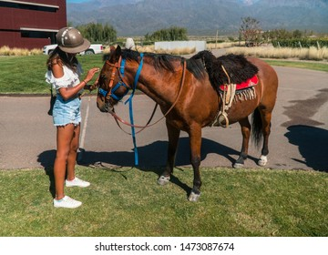 Woman tourist riding horse on holiday. Girl on horseriding activity on vacation, admiring the beautiful brown horse. Shot in Mendoza, Argentina.