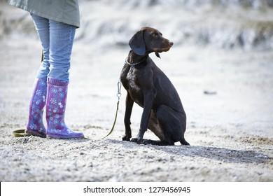 Woman training her dog