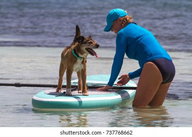 Woman training her dog to SUP (stand up paddle) board on Isla Mujeres.  Many people are starting to take their dogs on vacation with them. Photo taken October 2016, Isla Mujeres, Mexico.