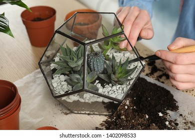 Woman transplanting home plants into florarium at table, closeup