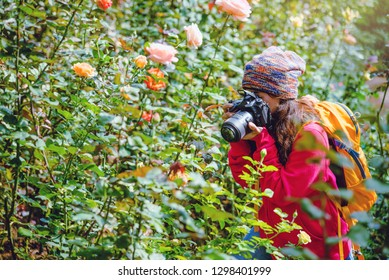 woman travel nature taking photographs in the rose garden at doi Inthanon Chiangmai in Thailand.