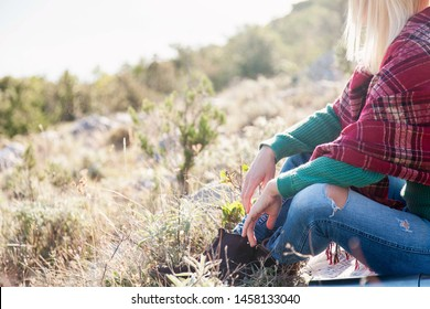 Woman traveler in sitting on autumn grass in mountains. Cozy fall details. Girl in warm plaid is enjoying life, relaxation at nature, traveling.