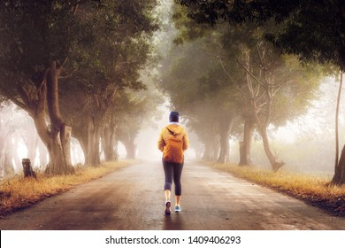 Woman traveler walks along a foggy forest road in the early morning.