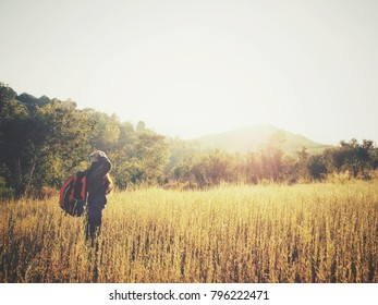 Woman traveling backpack with meadow and mountain