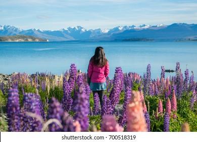 Woman traveller at lake Tekapo, New Zealand. Lupin flower at lake Tekapo hit full bloom in December, summer season of New Zealand.