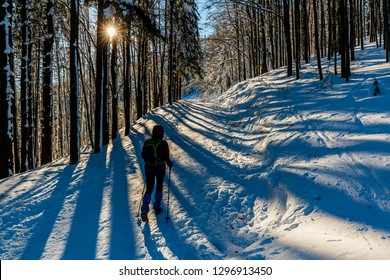 Woman trekking traveler with backpack hiking in Beskidy mountains at sunny day, adventure concept active vacations with outdoor activity on snow in the forest, Poland.