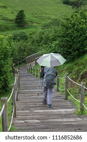 woman with umbrella descending a wooden staircase