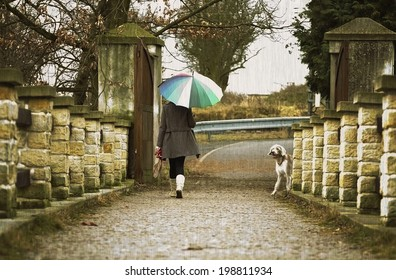 woman with an umbrella walks with her dog in the rain outside.