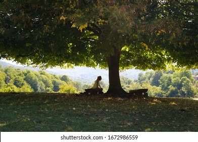 Woman under the shade of a tree. Woman sits on the home-made bench in shade of the  tree. She rests under the wide-crowned tree