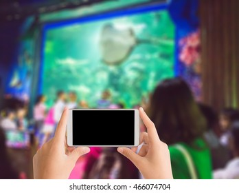 woman use mobile phone and blurred image of children see a man feed the fishes in the aquarium