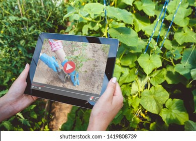 Woman using tablet and waching video tutorial how to become an agronomist