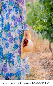 Woman in vaintage floral dress with natural coloured straw hat in hand walking along grape vine bush in vineyard - half body non recognize model