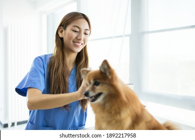 woman veterinarian holding a puppy