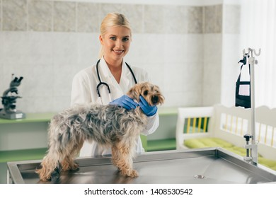 woman veterinarian posing with dog at the clinic
