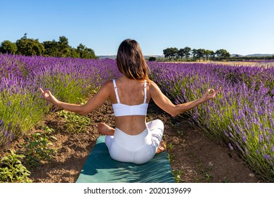 A woman viewed from behind doing yoga in a blooming lavender field. She is seated with crossed legs, her thumbs and index finger touching together in the Chin Mudra gesture. A sense of concentration.