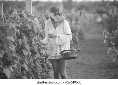 Woman in vineyard