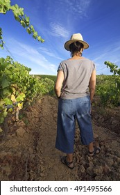 woman in vineyards watching the grape clusters before harvesting , Bierzo , Leon, Spain