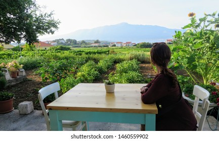 A woman waiting at a table ready to enjoy a meal with a view of a sprawling wine vineyard growing the local grk grapes with the small town of Lumbarda in the background, on Korcula island in Croatia.