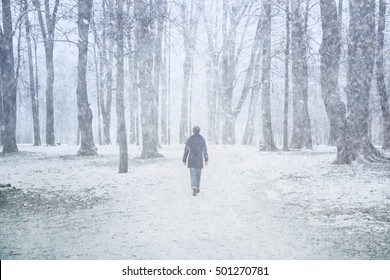 Woman walk alone in the park with trees at snowy day.